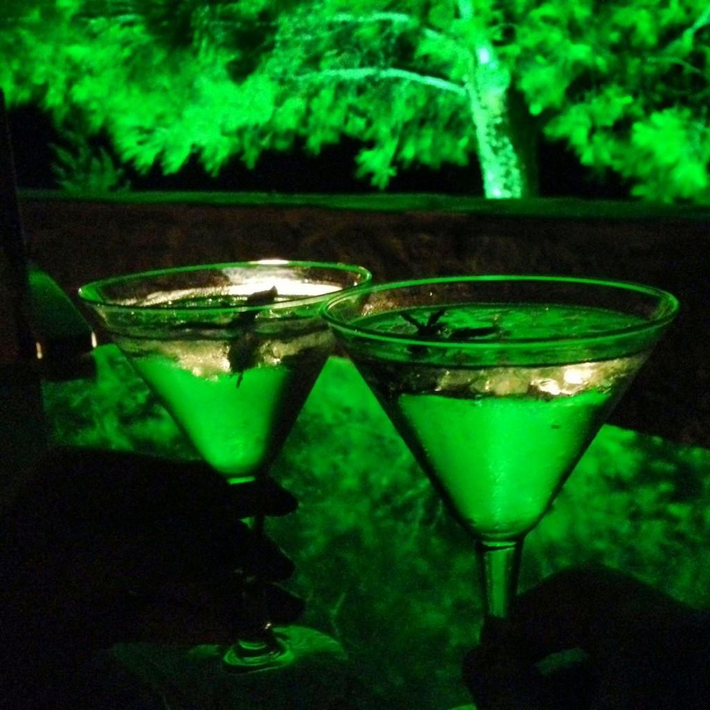 Sakız likörü; Volissos'da koy'a karşı gecenin serinliğinde içerken mükemmel bir tad'a dönüşüyor.